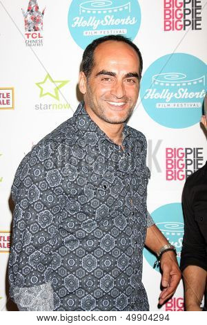 LOS ANGELES - AUG 17:  Navid Negahban at the HollyShorts Film Festival  at the TCL Chinese 6 Theaters on August 17, 2013 in Los Angeles, CA