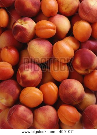 Background Of Peaches And Apricots From 4X5 Film