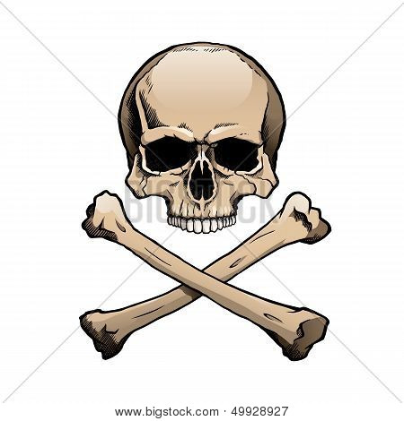 Colored human skull and crossbones