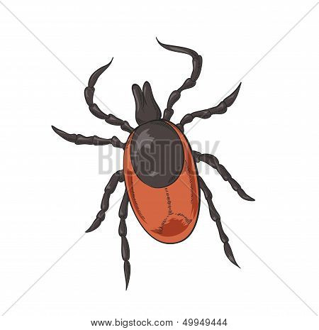 Vector image of big red shiny tick poster
