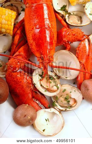Boiled lobster dinner with clams, corn and potatoes