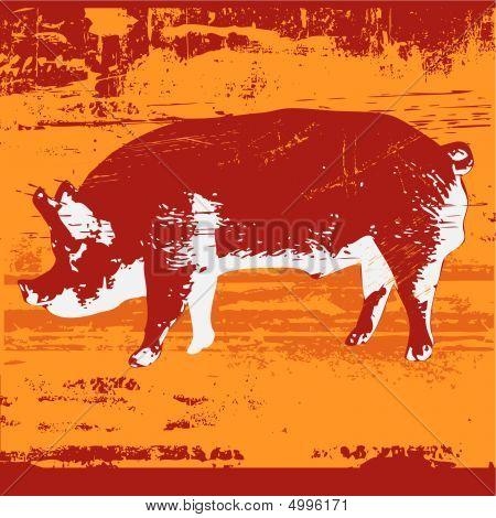 Pig Grunge