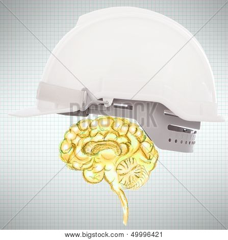 Brain Protect Use For Business And Know How Protection