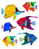 Set of toy fishes isolated on white background poster