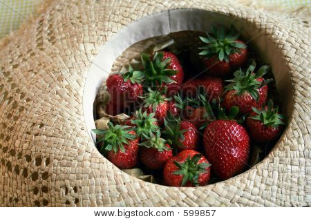 Summer Fruit Series - Strawberrys