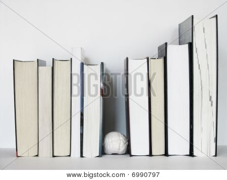 Brain Between The Books 3