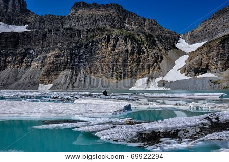 Trekking In Grinnel Lake Trail, Glacier National Park, Montana, Usa