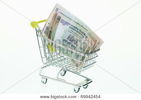 Indian Rupee In Shopping Cart