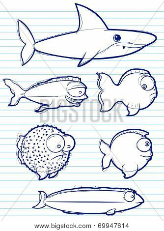 Fish Drawings