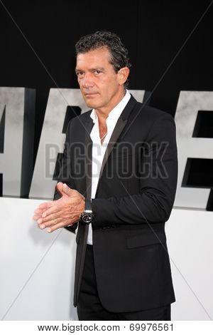 LOS ANGELES - AUG 11:  Antonio Banderas at the