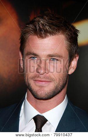 LOS ANGELES - JAN 8:  Chris Hemsworth at the