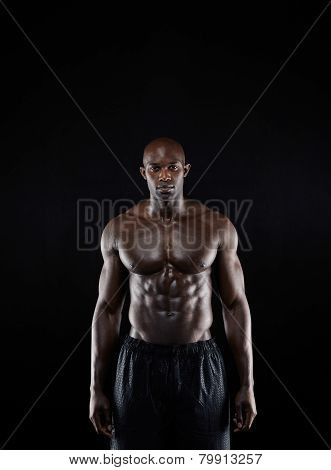 Bodybuilder With Muscular Physique