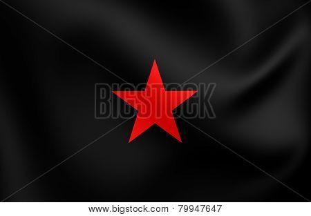 Flag Of Ezln