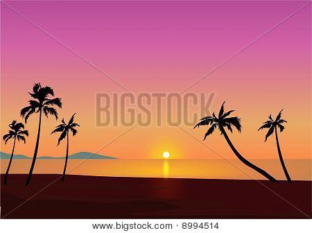 Beach Against A Setting Sun