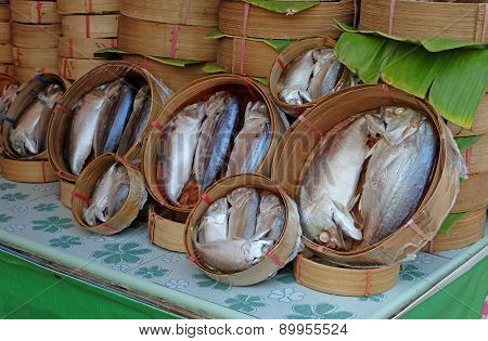Packaging Tuna Fish In Market