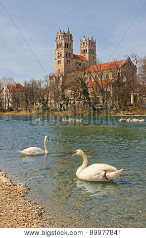 River Isar With Swan Couple And Maximilianskirche