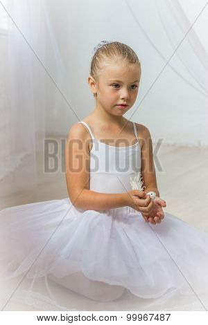 Little Cute Ballerina With White Bird. Princess Concept. Fairy Tail