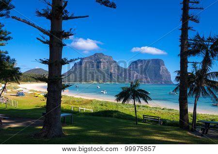 View through pines to Lagoon Beach