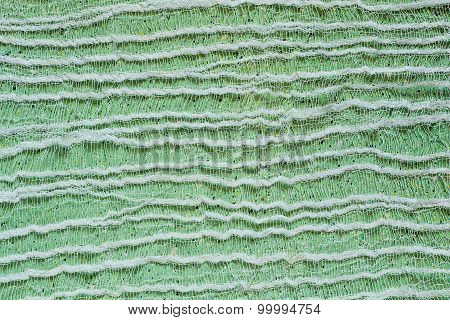 Green Background With Tenuous Gauze On The Surface
