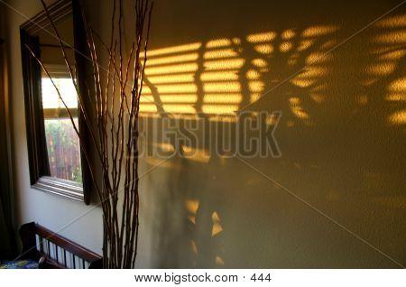 Late Sun Wall