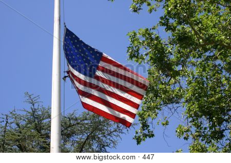 US Flag On Pole