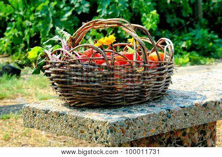 Organic veggies.