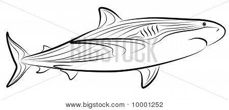 鲨鱼简笔画纹身分享展示