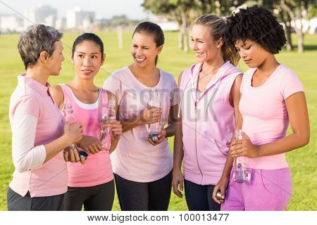 Women wearing pink for breast cancer and talking in parkland