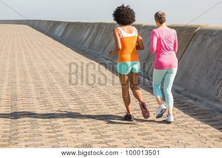 Rear view of two sporty women jogging together at promenade