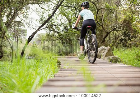 Rear view of a fit woman cycling her bike on a wooden path