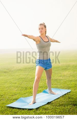 Peaceful sporty blonde doing warrior pose on exercise mat in parkland