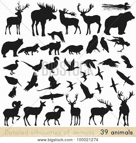 Set Of Vector Animal Silhouettes For Design