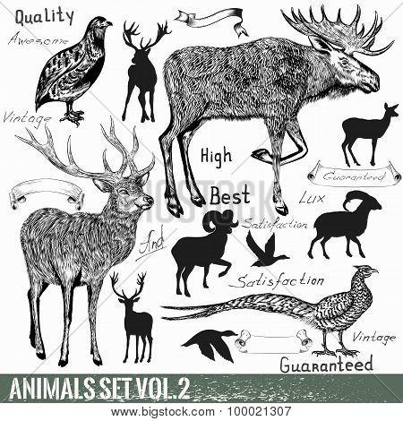 Set Of Vector Hand Drawn Detailed Wild Animals