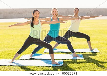 Portrait of smiling sporty women stretching on exercise mat in parkland