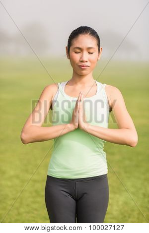Peaceful sporty woman doing yoga in parkland