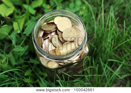 Coins in money jar on green grass outdoors