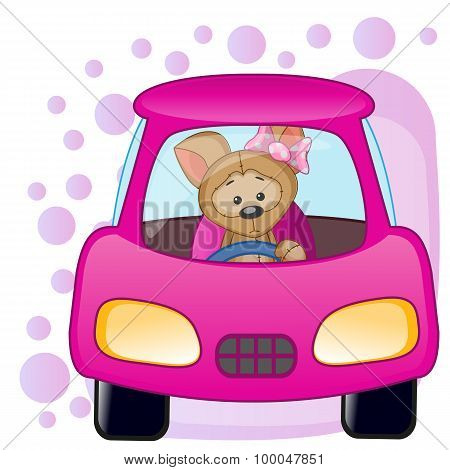 Puppy Girl In A Car