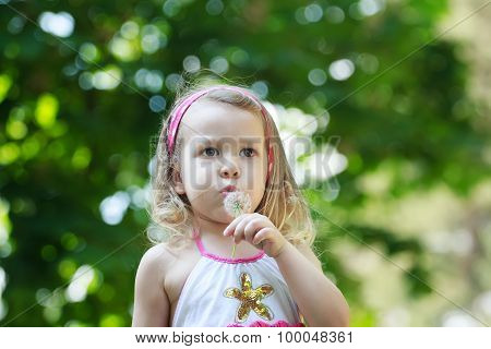 Preschooler girl blowing on white Taraxacum officinale or common dandelion seeds