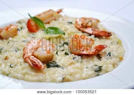 Tasty risotto with tiger prawns and special Arborio rice
