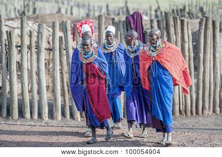 Masai Women In Tanzania