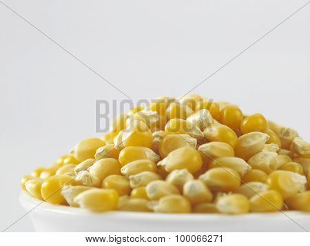 close of the maize corn
