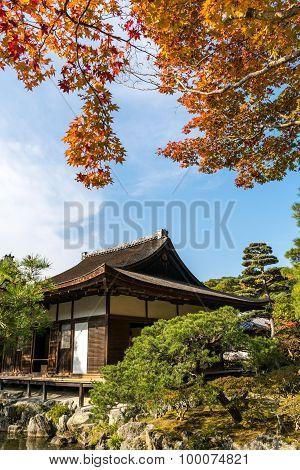 Ginkakuji Silver (the Silver Pavilion) In Autumn Season