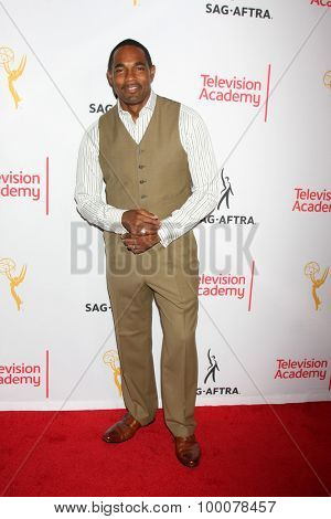 LOS ANGELES - AUG 27:  Jason George at the Dynamic & Diverse Emmy Celebration at the Montage Hotel on August 27, 2015 in Beverly Hills, CA
