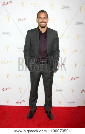 LOS ANGELES - AUG 26:  Bryton James at the Television Academy's Daytime Programming Peer Group Reception at the Montage Hotel on August 26, 2015 in Beverly Hills, CA