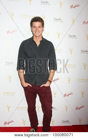 LOS ANGELES - AUG 26:  Robert Palmer Watkins at the Television Academy's Daytime Programming Peer Group Reception at the Montage Hotel on August 26, 2015 in Beverly Hills, CA
