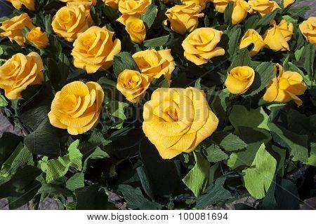 Yellow Paper Roses