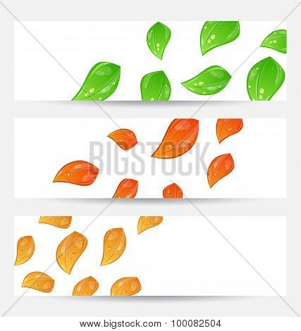 Set autumn seasonal cards with changing leaves