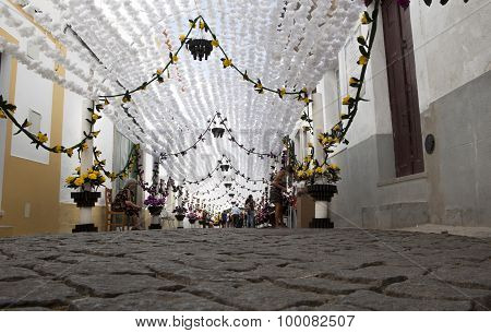 Flower Festival From The Ground