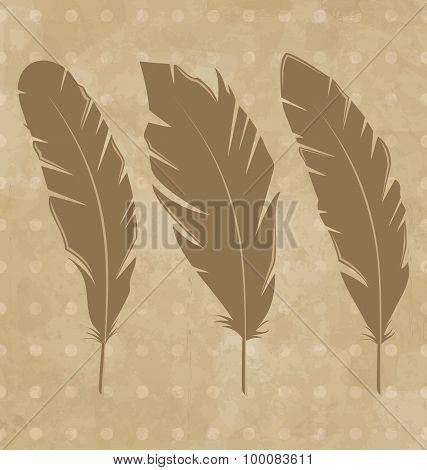 Set vintage feathers on grunge background