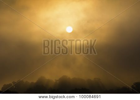 Foggy sunrise over the forest on the hill